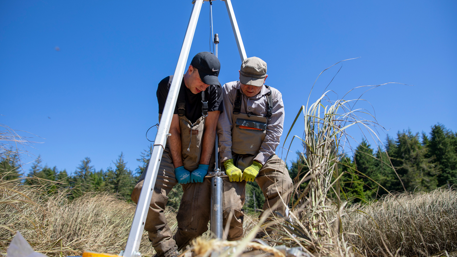 Two researchers in the field operate equipment in the South Slough near Coos Bay, Oregon.